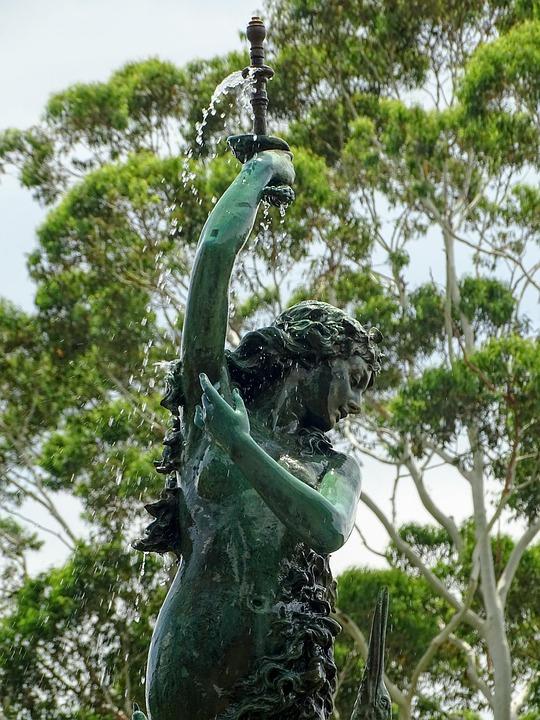 Nature, Tree, Tropical, Statue