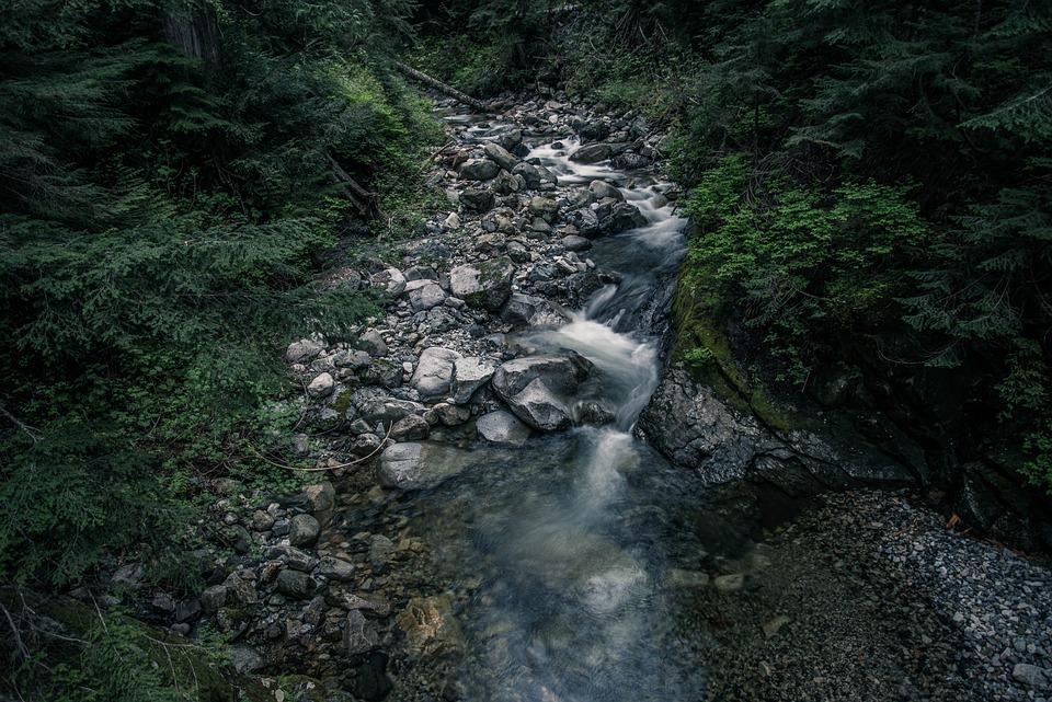 Nature, Creek, Stream, Stones
