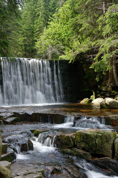 Waterfall, Water, Forest, Nature, Stream, Torrent