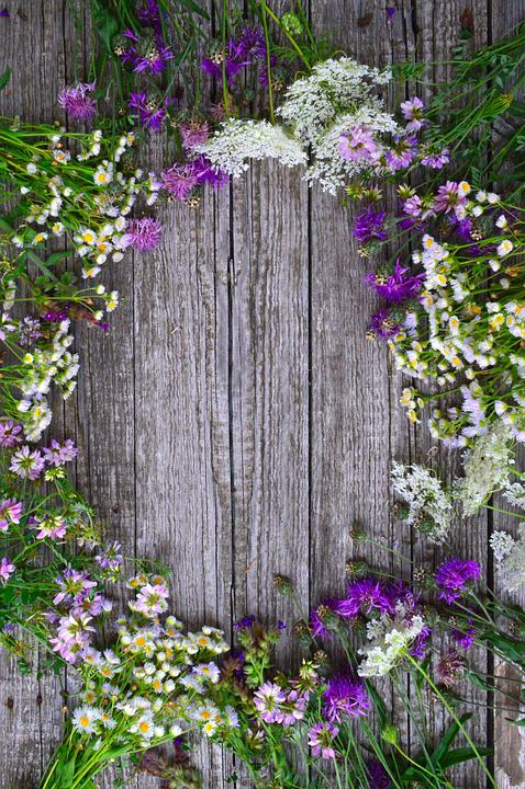 Color, Bouquet, Summer Flowers, Summer Bouquet, Nature