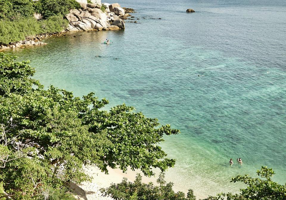 Sea, Turquoise, Beach, View, Ocean, Nature, Summer