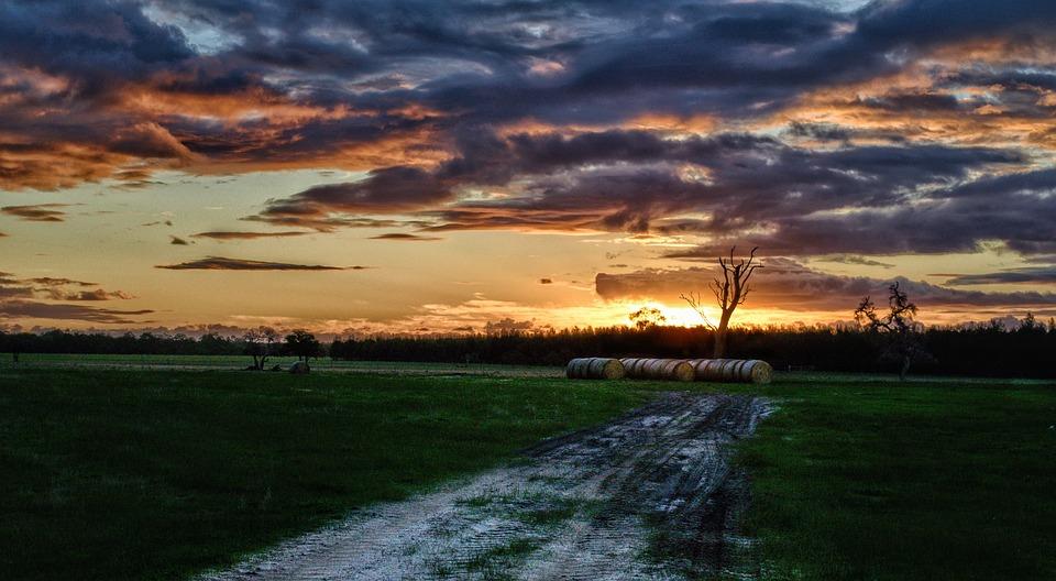 Sunset, Farm, Light, Nature, Countryside, Field, Rural
