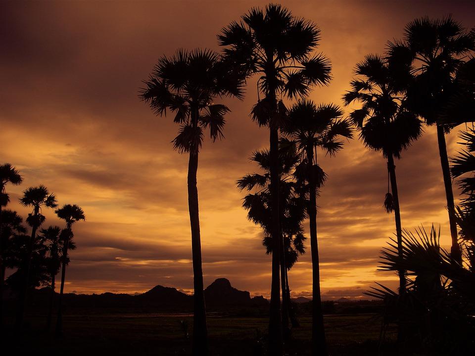 Thailand, Sunset, Nature, Asia