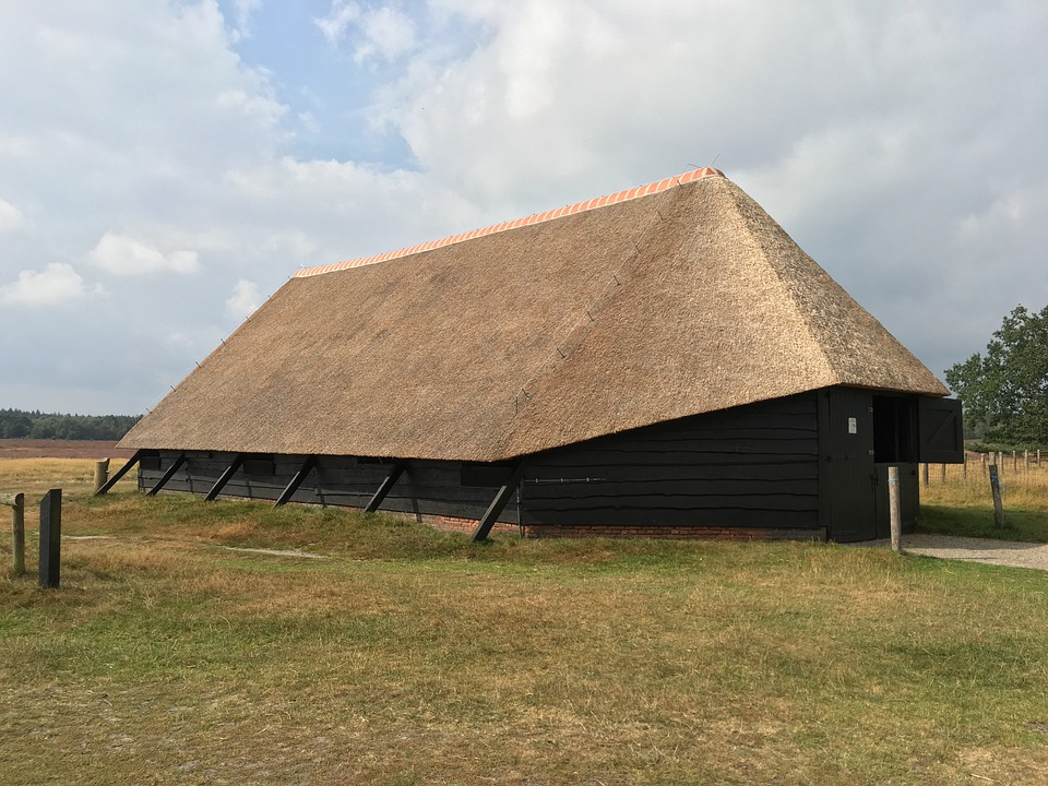 Sheepfold, Stable, Barn, Thatched Roof, Reed, Nature