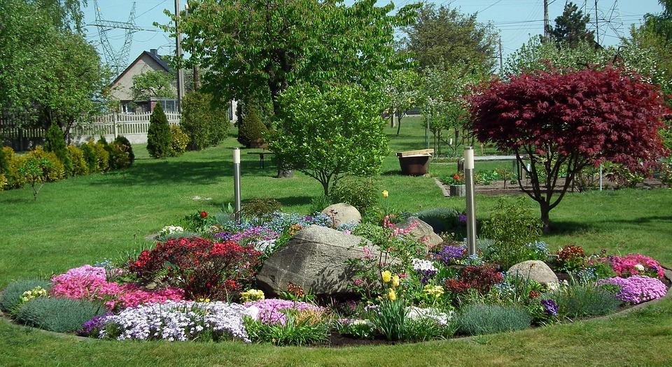Flower, Garden, Lawn, Tree, Nature, Discounting Zipper