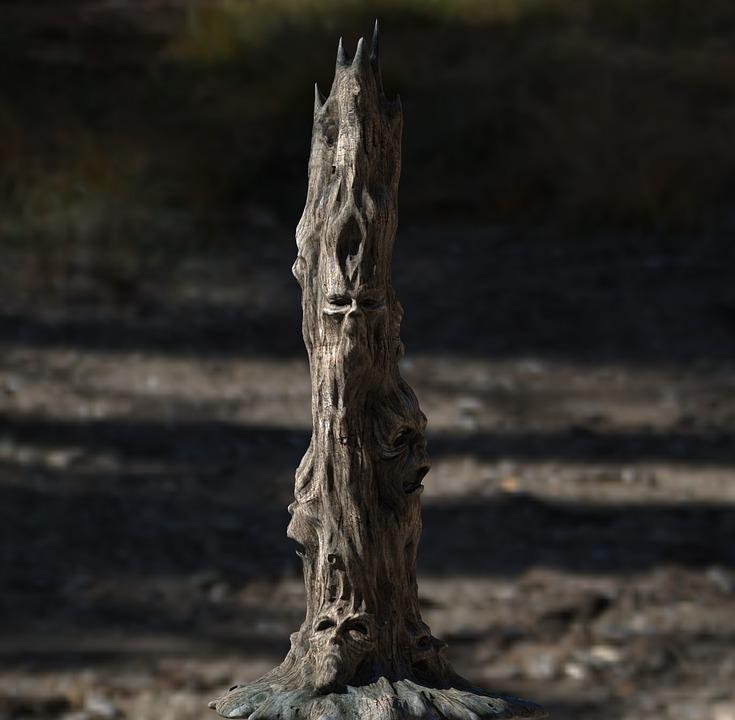Nature, Tree, Wood, Face, Fash, Totem