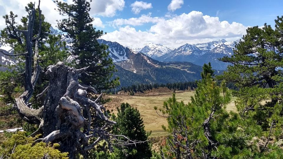 Mountain, Wood, Nature, Landscape, Tree, Travel