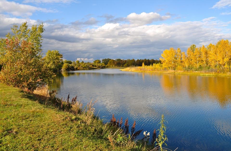 Autumn, Landscape, Nature, River, Trees, Gold