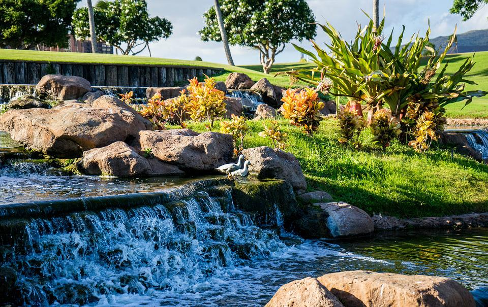 Waterfall Garden Nature Tropical Water Pond Green
