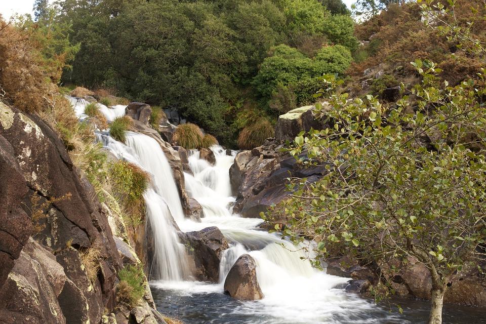 Waterfall, Nature, River, Water, Landscape, Vegetation