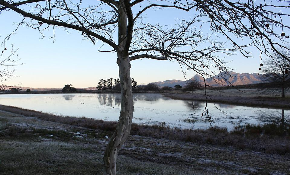 Water, Nature, Landscape, Tree, Lake, Winter, Outdoors