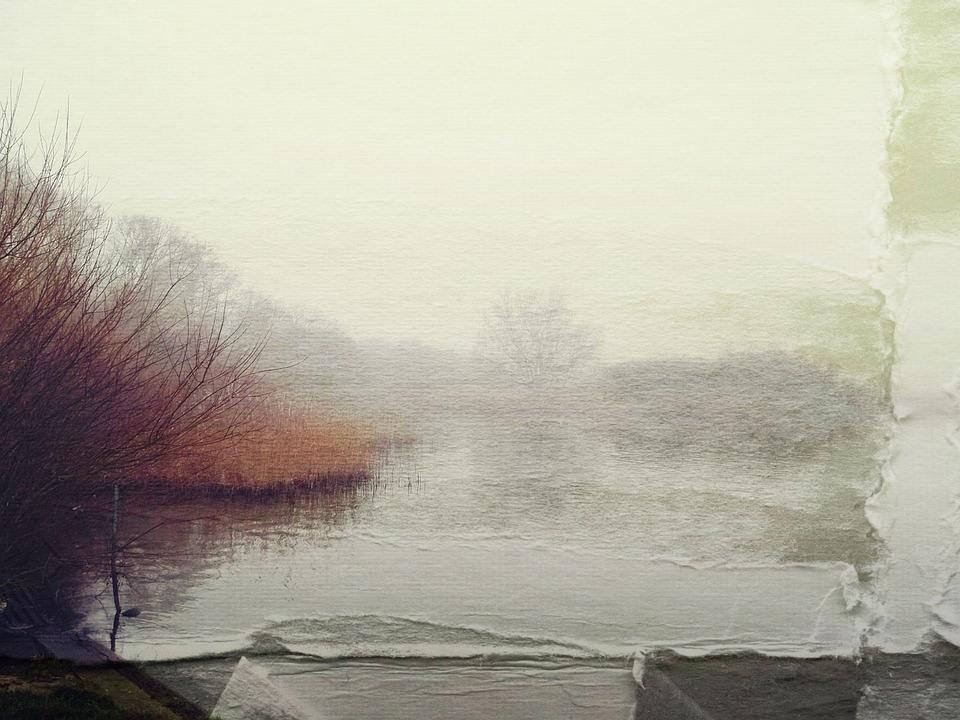 Lake, Paper, Veiling, Old, Bank, Nature, Water, Reed
