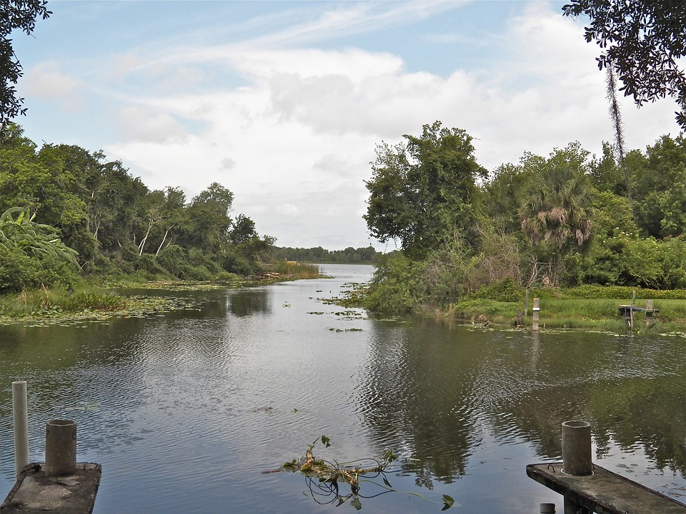 Florida Water Way, Lake, Water, Nature, Scenery