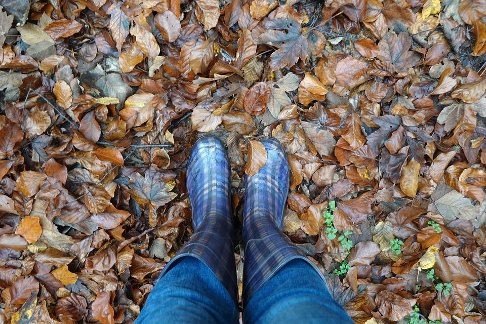 Rubber Boots, Autumn, Rain, Wet, Nature, Weather