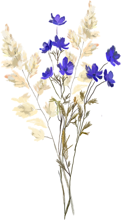 Dried Flowers, Flowers, Wildflowers, Autumn, Nature