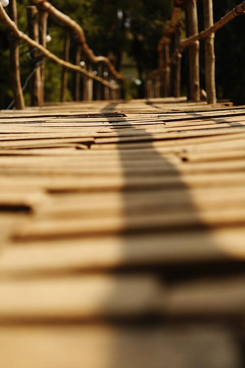 Bridge, Wood, Nature, Path, Web, Transition, Boardwalk