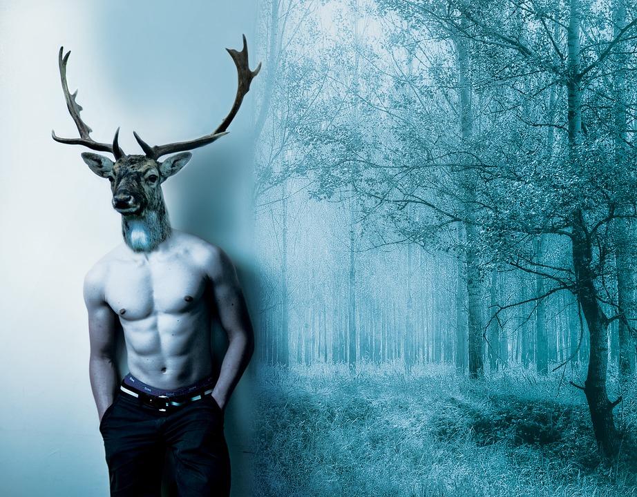 Deer, Man, Fantasy, Forest, Dream, Nature, Wild, Wood