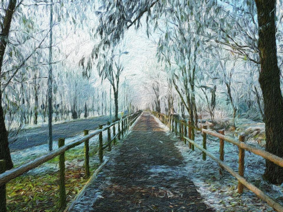 Wood, Tree, Nature, Trail