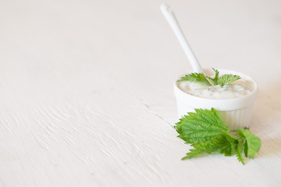 Background, Nettle, Yogurt, White, Nature, Green, Leaf