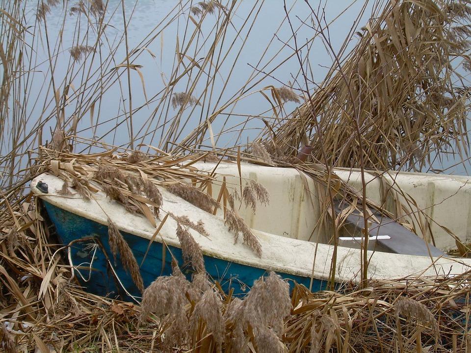 Boat, Row Boat, Old, Abandoned, Nautical, Rowboat