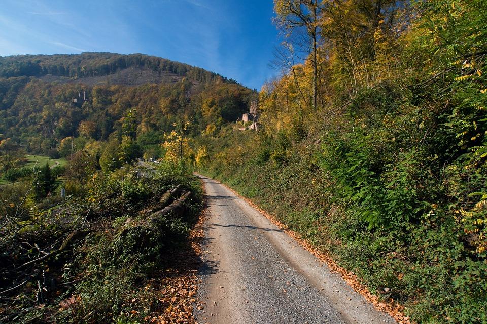Neckarsteinach, Odenwald, Autumn, Away