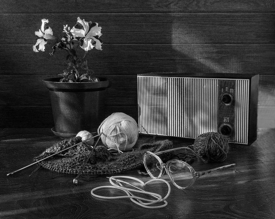 Still Life, Tangle, Radio, Flower, Needles