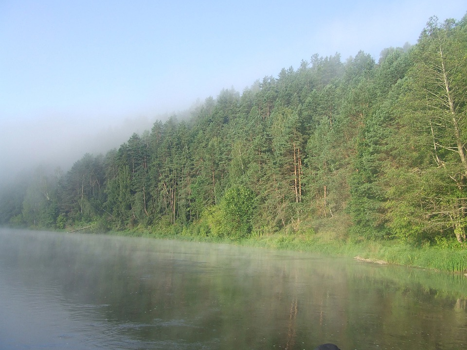 River, Neris, Lithuania, Landscape, Wilderness, Scenery