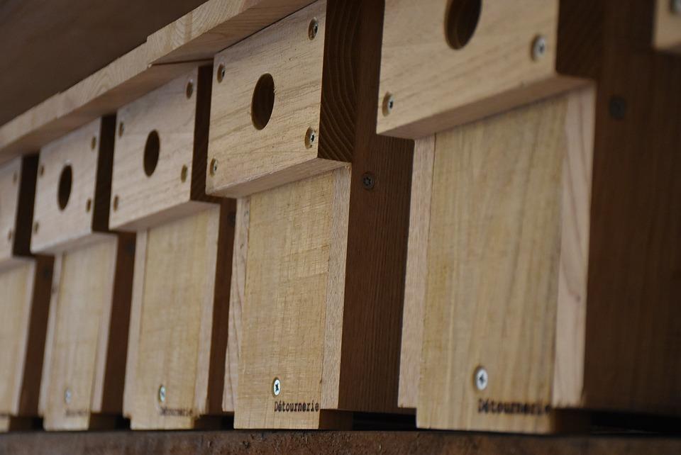 Nest Box, Wood