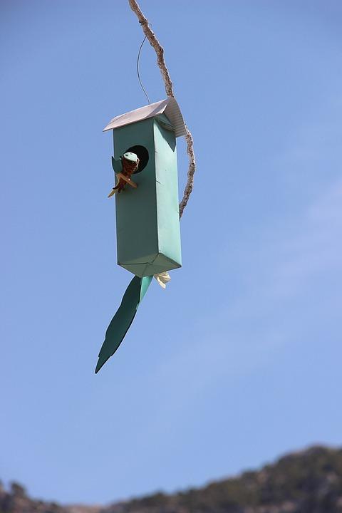 Bird Feeder, Nesting Box, Nesting Place, Nesting Help