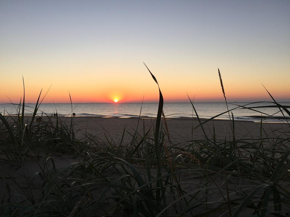 Beach, Dune, Setting Sun, Coast, Netherlands