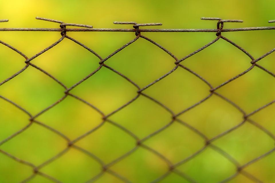 Fence, Background, Wire, Network, Pattern, Barbed Wire