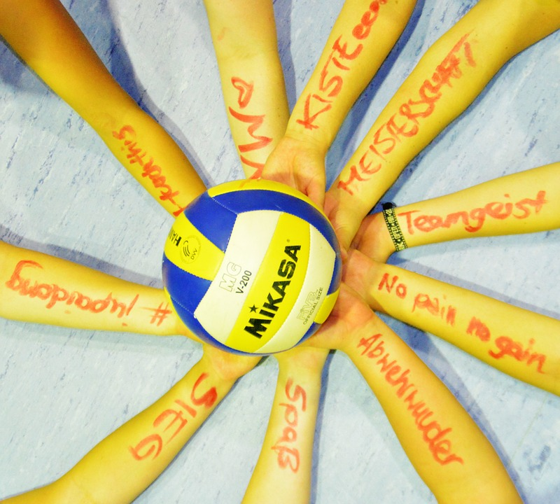 Volleyball, Team, Team Sport, Network, Fairness