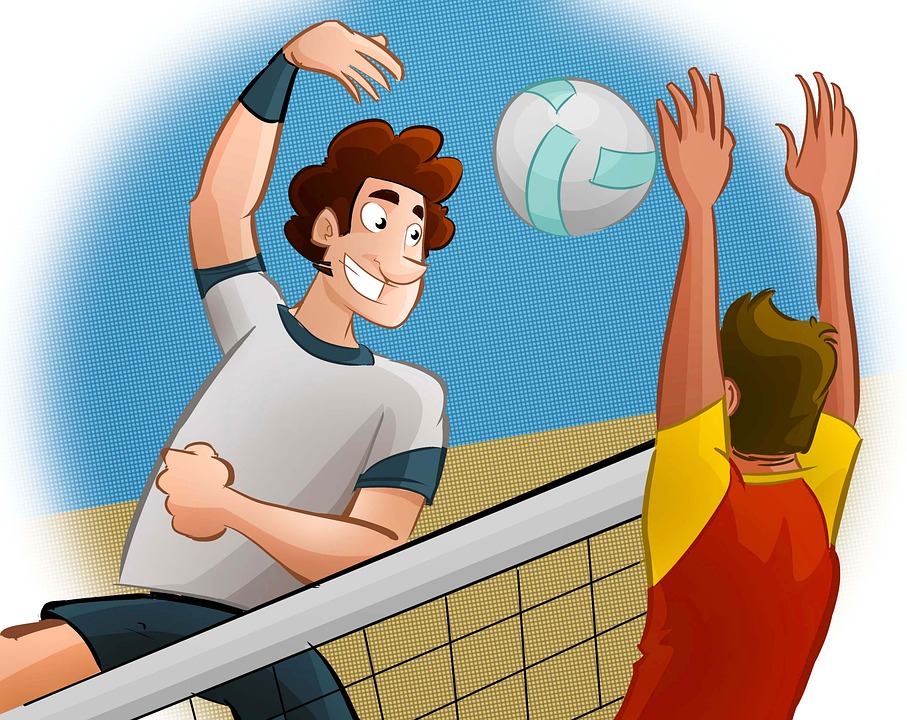 Sport, Volleyball, Man, Network