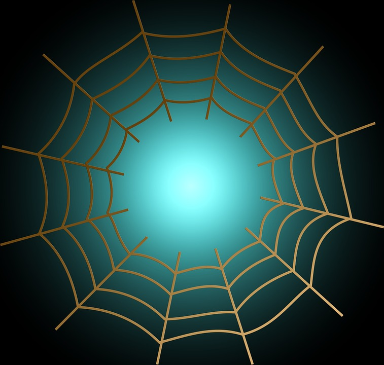 Network, Cobweb, Networking, Bill, Abstract, Background