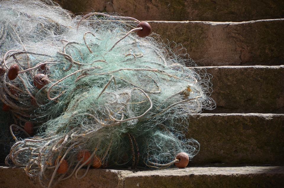 Nature, Network, Rest, Fishing, Tangle, Fisherman