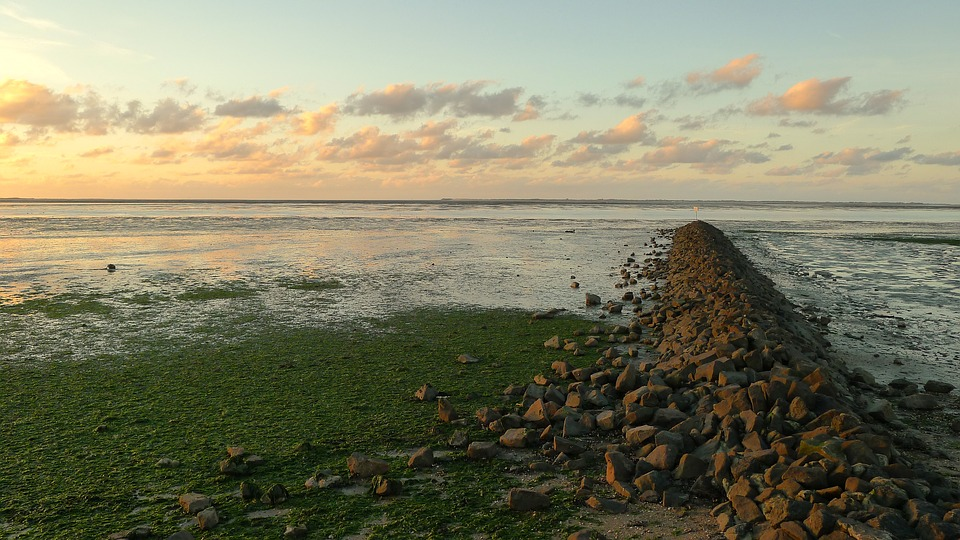 Wattenmeer, Wadden Sea, Neuharlingersiel, North Sea