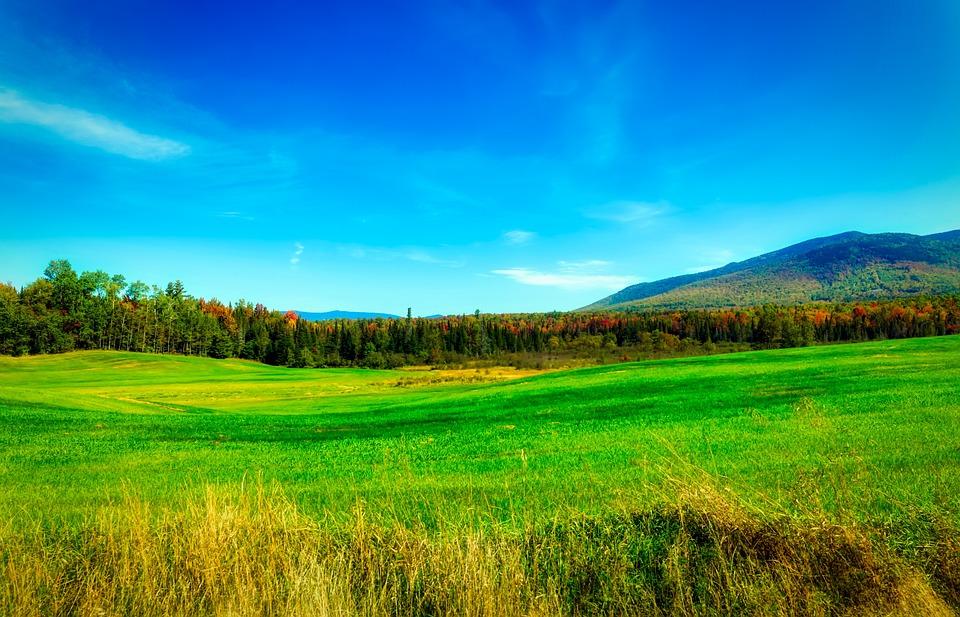 New Hampshire, New England, America, Landscape, Nature