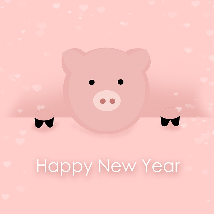 Pig, New Year, New Year's Day, Turn Of The Year