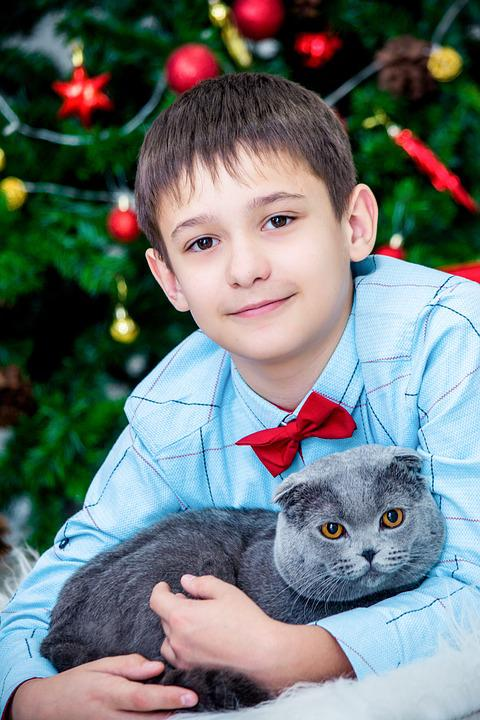 Christmas Decor, New Year's Eve, The Boy With The Cat