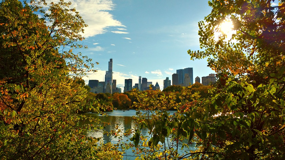 New York, Central Park, Nyc, Manhattan, Park, Scenery