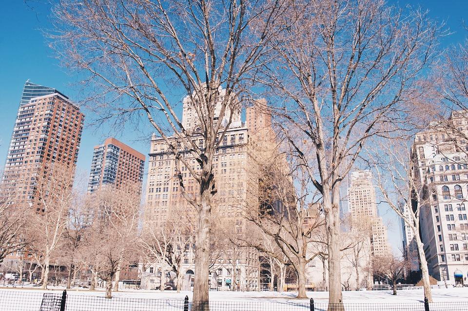 Building, New York, Snow