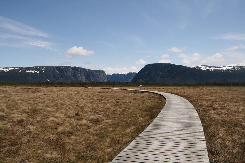 Newfoundland, Pathway, Landscape, Sky, Nature, Canada