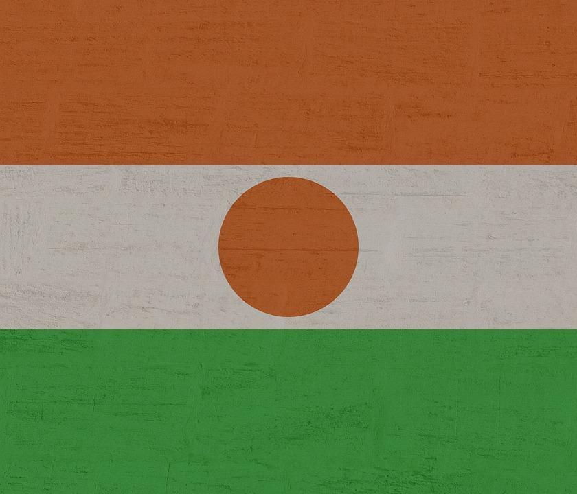 Niger, Flag, International
