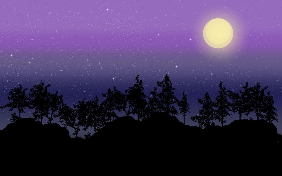Night Sky, Sky, Night, Dark, Star, Silhouette, Moon