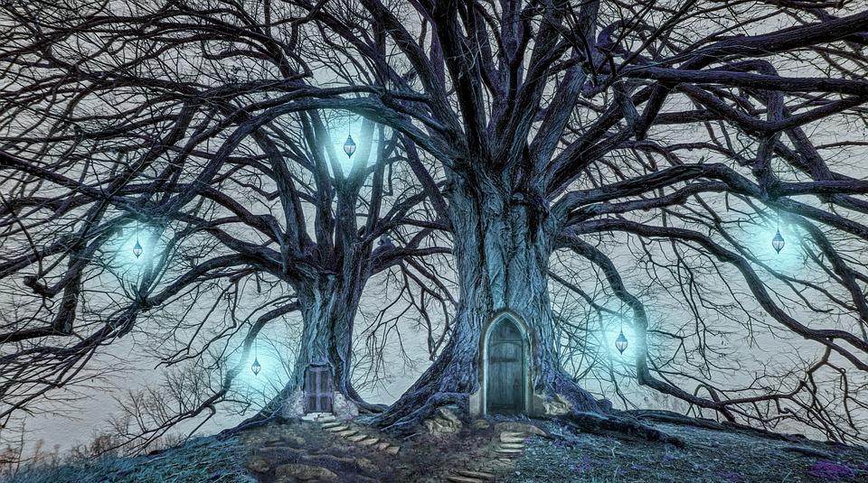 Trees, Lights, Fairy Lights, Night, Doors, Doorway