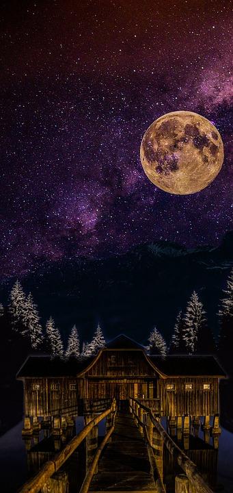 Night, Noite, Floresta, Moon, Lua