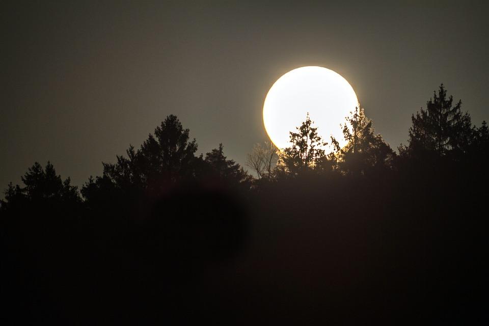 Full Moon, Moon, Moonlight, Sky, Night, Mood, Nature