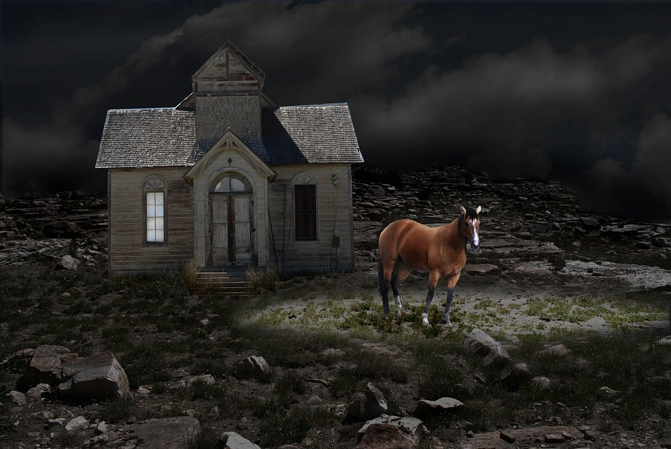 Night, Horse, Ranch House, Fantasy, Outdoors