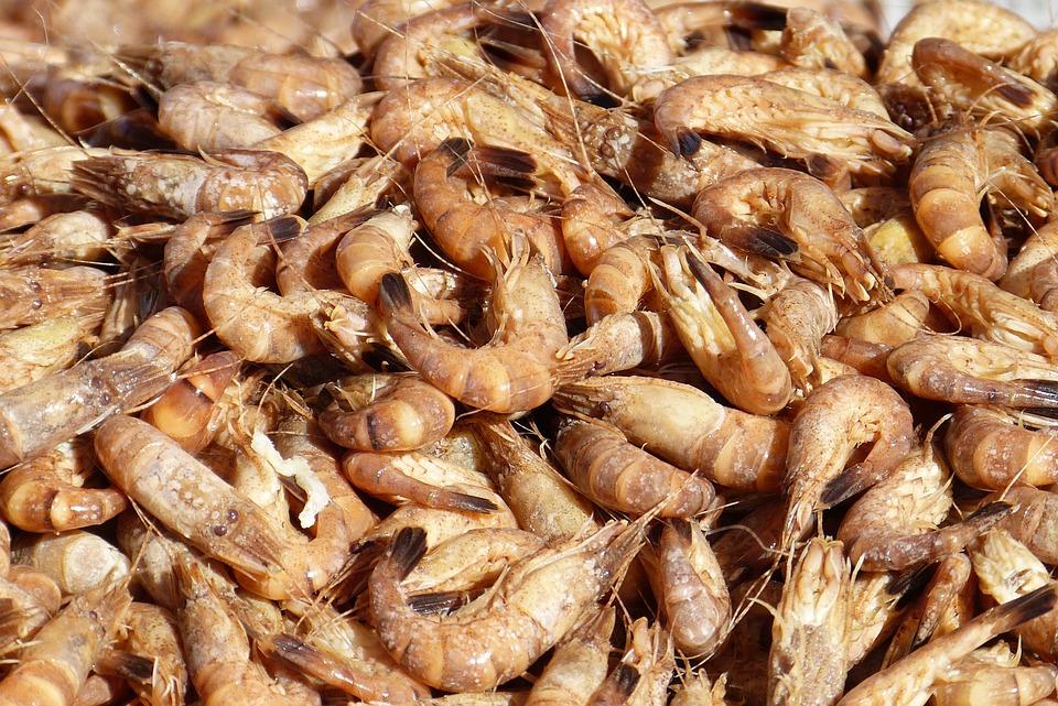 Crabs, Delicacy, Seafood, North Sea, Shrimp