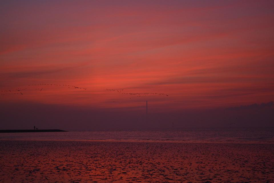 Afterglow, Sky, North Sea, Evening Sky, Dusk